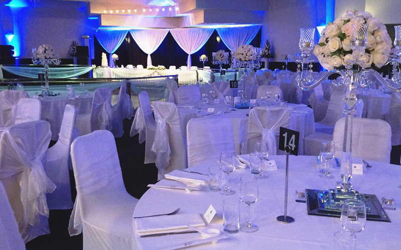 Reception decoration donatos reception junglespirit Image collections