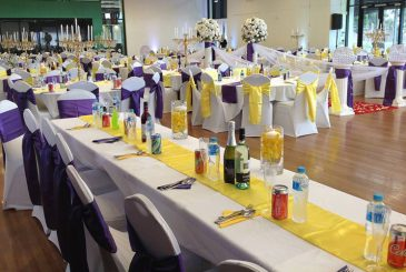 purple-yellow-theme